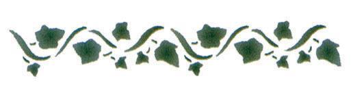 Шаблон бръшлян, 11 х 70 см