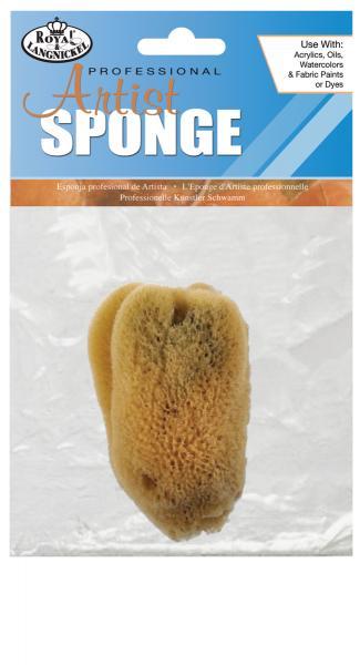 Коралова гъба R2004