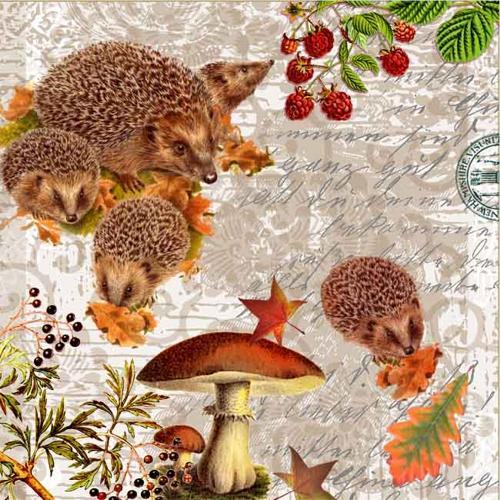 Салфетки NOUVEAU 33 см х 33 см - Hedgehog Family